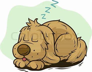 Billedresultat for hund tegneseriefigur