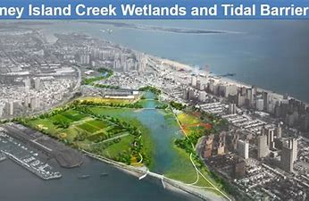 Image result for images new york city with wetlands canals global warming