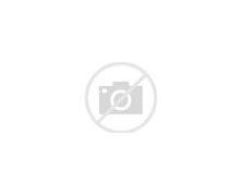 Image result for mleko kozie
