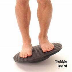 Image result for Wobble Board Exercises