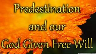 Image result for PREDISTINED BY gOD