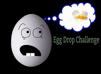 Image result for egg drop challenge