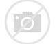 Will Bush Endorse Biden?