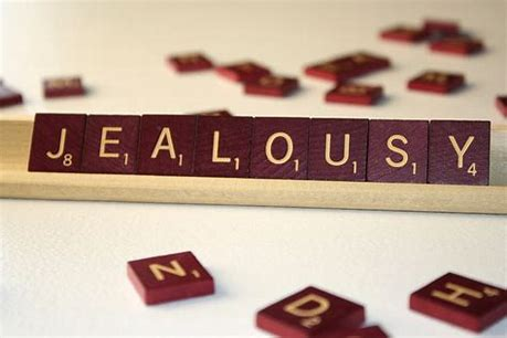 Image result for jealousy