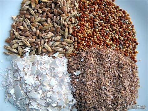 ANIMAL FEEDS BIRD FEED SUPPLIER BULGARIA S N EXPORT
