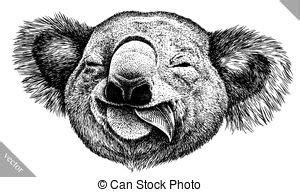 koala bear black white koala bear black and white