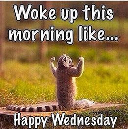 Image result for kids happy wednesday