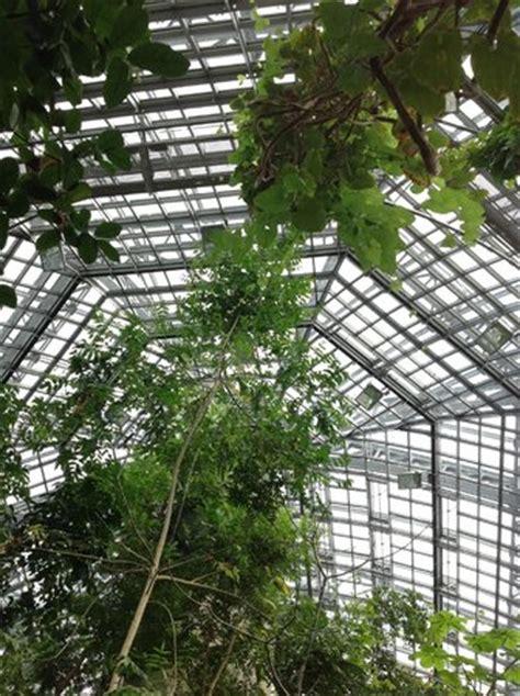 botanischer garten berlin all you need to know before