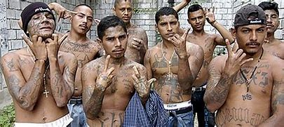 Image result for images ms 13 salvatrucha