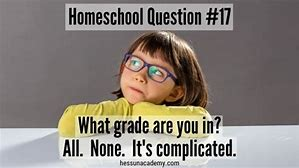 Image result for homeschooling memes