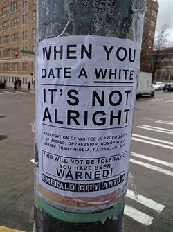 Image result for anti-white posters