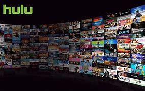Resultado de imagen de Hulu Premium