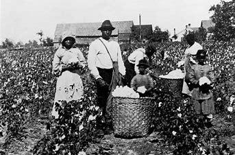 Bildergebnis für Schwarze Menschen auf einer Plantage