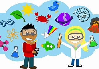 Image result for primary school science clip art