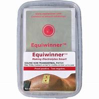 Image result for equiwinner patches