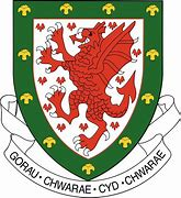 Image result for wales football team badge