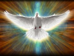 Image result for free pics of holy spirit