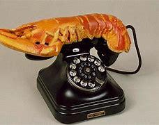 Image result for lobster telephone
