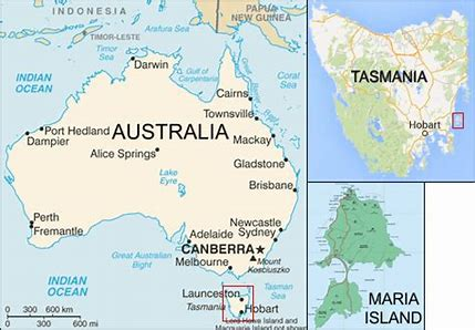 Image result for cheetahFlinders Island in Tasmania world map