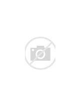 Image result for Sage Cleansing