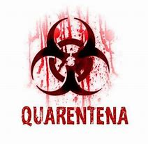 Image result for quarentena