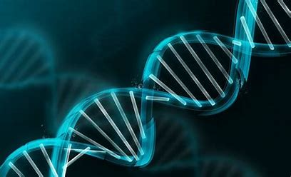 Image result for free pictures of DNA