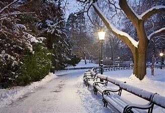 Risultato immagine per foto invernaliti