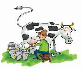 Résultat d'images pour illustration dernier trayant une vache