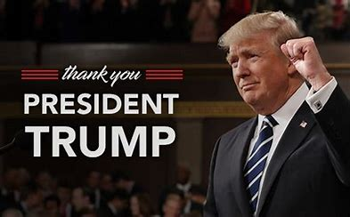Image result for pro-President Trump