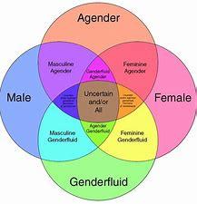 Image result for images gender spectrum