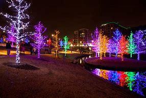 Image result for free pics christmas lights