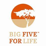 Afbeeldingsresultaten voor logo big five for life