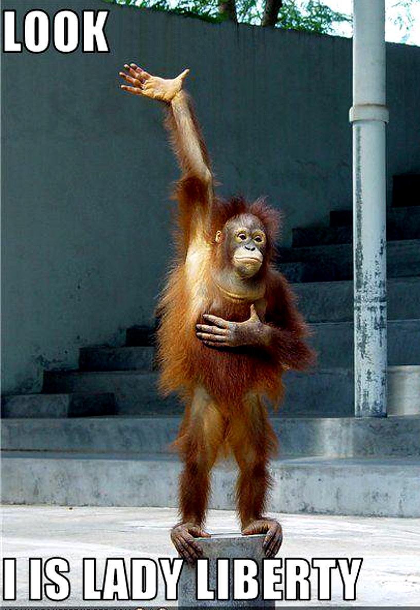 la nouvelle statue de la liberté ! R721cdc9325cd56bddcb645bdef488d4f?rik=PO%2fBbGFgWssDOA&riu=http%3a%2f%2fthewowstyle.com%2fwp-content%2fuploads%2f2015%2f01%2fmonkey-funny-animal-humor-20209669-816-1185