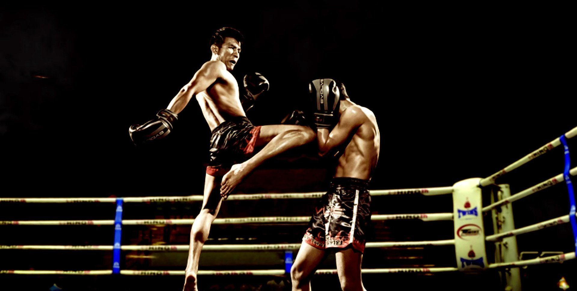 Liberlupus UFC, Sparring, Muay Thai, MMA Gloves | RWA Sportswear