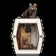 Pet Travel & Outdoors logo