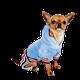 Pet Clothing logo