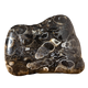 Rock, Fossil & Mineral Collectibles logo