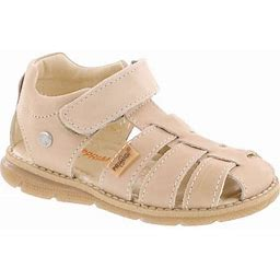 Primigi Boys 7078 European Fisherman Sandal With Closed Front And Closed Back, Infant Boy's, Size: 23 Medium EU / 7-7.5 M US Toddler, Brown