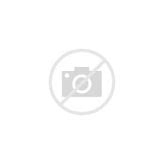 Amaryllis In White Ceramic Pot - Single Pack Bulbs