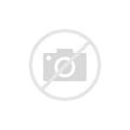 Harris Roach Killer Kit
