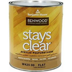 Benjamin Moore Stays Clear Dead Flat 1 Quart
