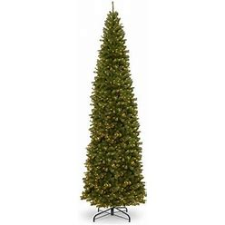 Andover Mills™ North Valley Pencil Green Spruce Artificial Christmas Tree With Clear/White Lights In Green/White   Size 192.0 H X 72.0 W In