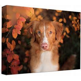 "Canvas Prints Photo - Affordable Canvas Prints - 8""X8"" - Custom Canvas Prints"