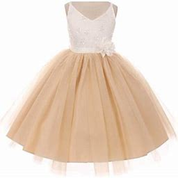 Dreamer P Big Girls' Two Tone V Neck Beaded Lace Top Flowers Girls Dresses Champagne 12 (T10r33k), Girl's, Beige