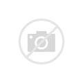 Mini Walk-In Greenhouse Indoor Outdoor -2 Tier 4 Shelvesmini Greenhouse Portable Plant Flower Shelf Tent W/PE Cover Roll-Up Zipper Door For Lawn Patio