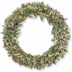 """The Holiday Aisle® Glittery Bristle 48"""" Lighted Wreath In Green/White   Size 48.0 H X 48.0 W X 7.0 D In   B000294751"""