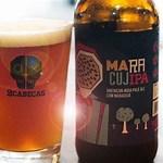 Brazilian Beers Brands