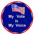 I Just Voted
