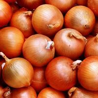 Onions Wallpapers