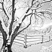 Snow Drawing